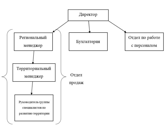 Структура ООО